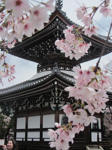Adore Japan